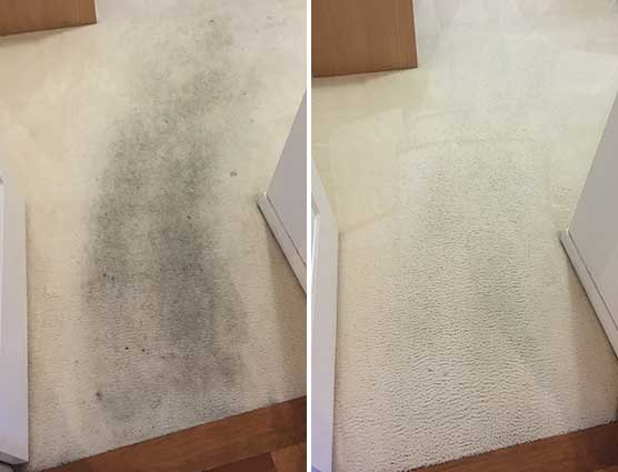 carpet-before-after-img