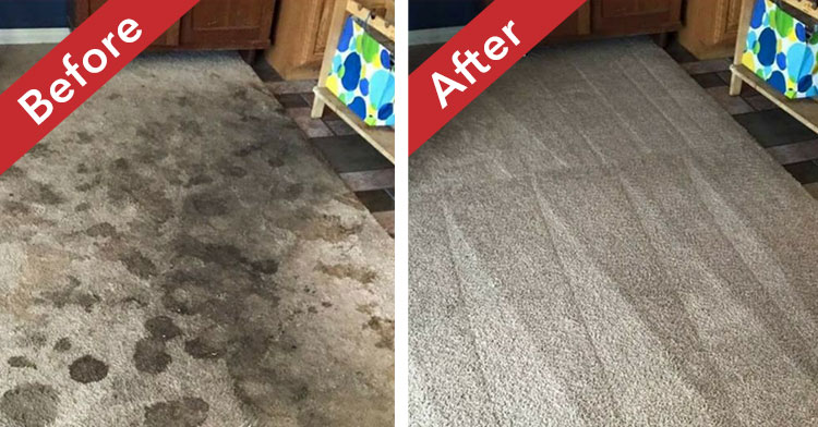 carpet-cleaning-before-after-img-1
