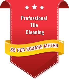Professional-Tile-Grout-Graphic-icon